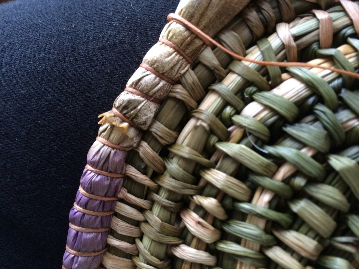 Coiling with natural materials / Nicole Robins