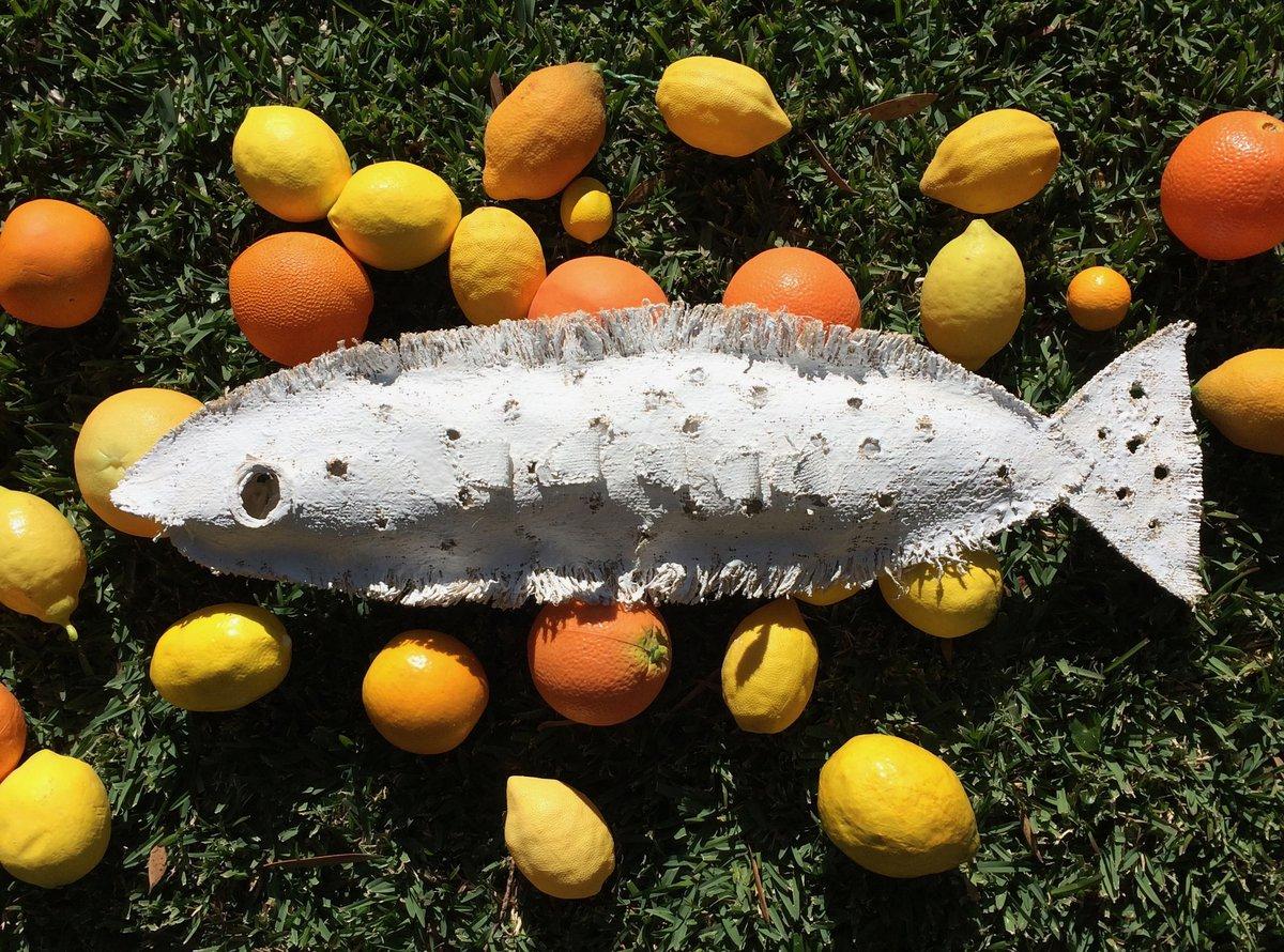 Fish & Fruit Dorothy Filshie