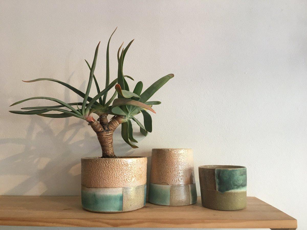 The DEA Store plant ceramics