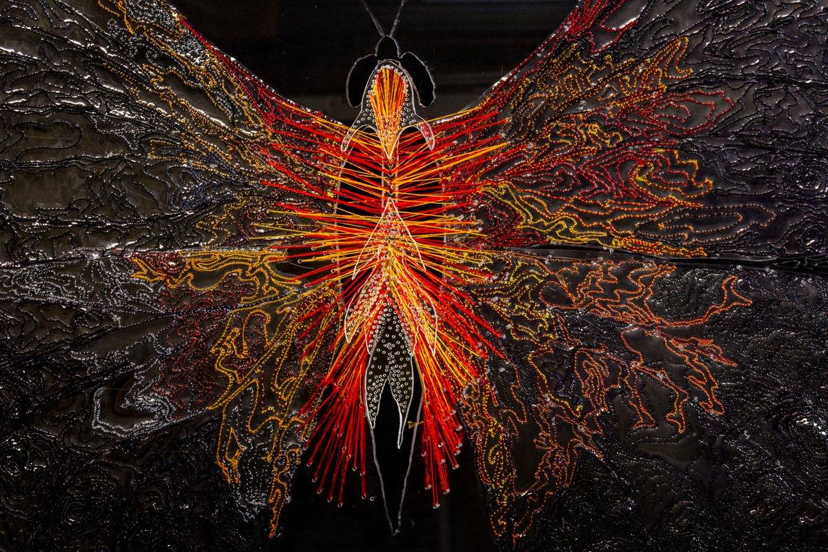 Irene Manion, Papilio Ardere, 2020. Photo Irene Manion