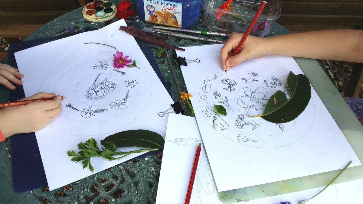 Mosman Art Gallery Botanical Watercolour Mandala Workshop