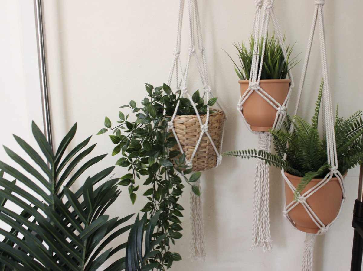Create With Us Macrame Plant Hanger Workshop