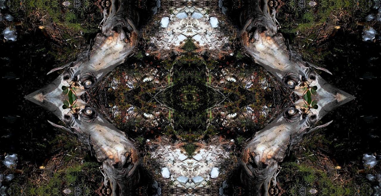 https://sydney-craft-week-prd.s3.amazonaws.com/media/uploads/images/Kathie_Najar_Jewel_of_the_mountain_2020._Image_courtesy_of_the_artist.jpg